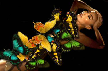 The beautiful chinese actress Bai Ling was attacked by butterflies... help her to chase them and find back her dignity.